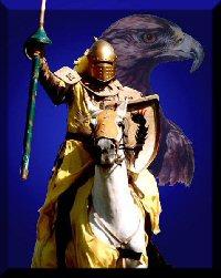 Il Cavaliere Solitario